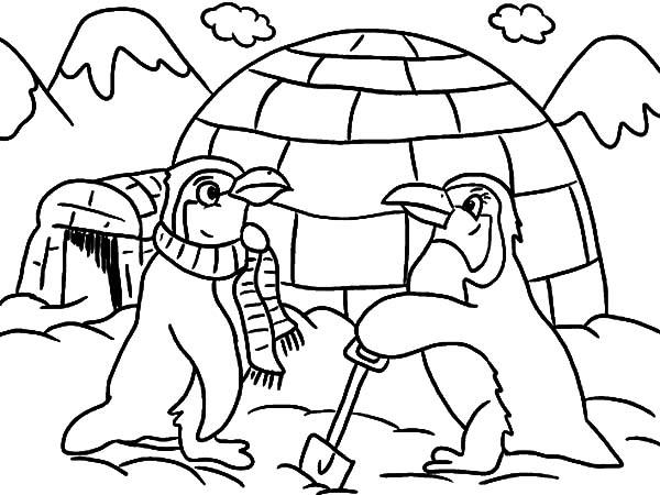 Igloo And Two Penguins Coloring Pages
