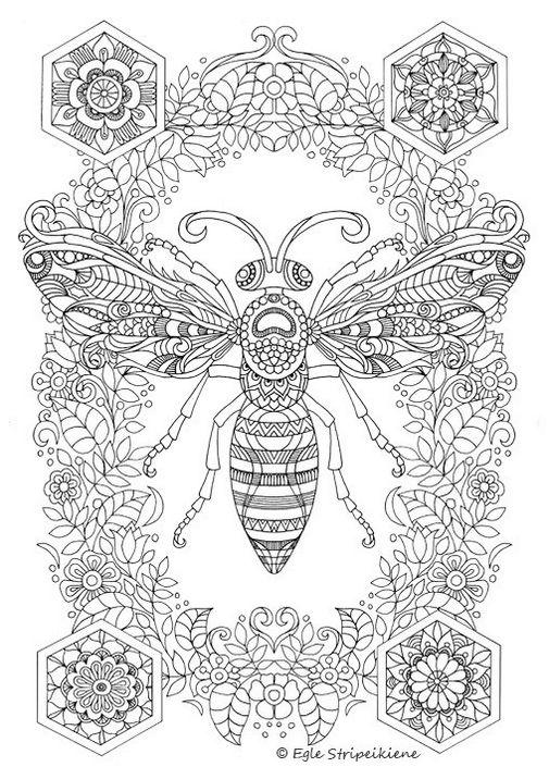 Insect Bee Mandala Coloring Page