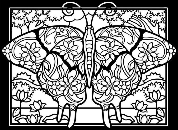 Insect Butterfly Mandala Coloring Book