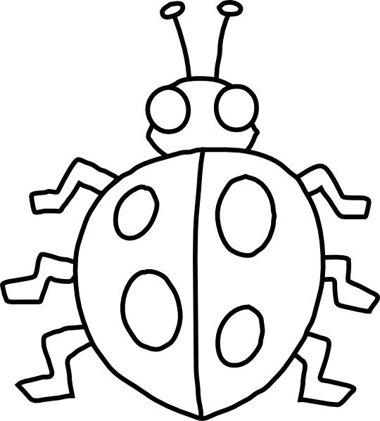 Insect Coloring Pages Cute Ladybug
