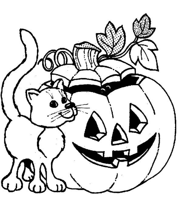 Jack O Lantern Coloring Pages With Cat