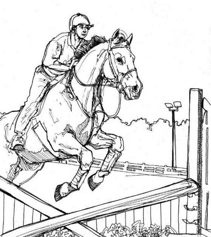 Jumping Horse Animal Coloring Pages Kids