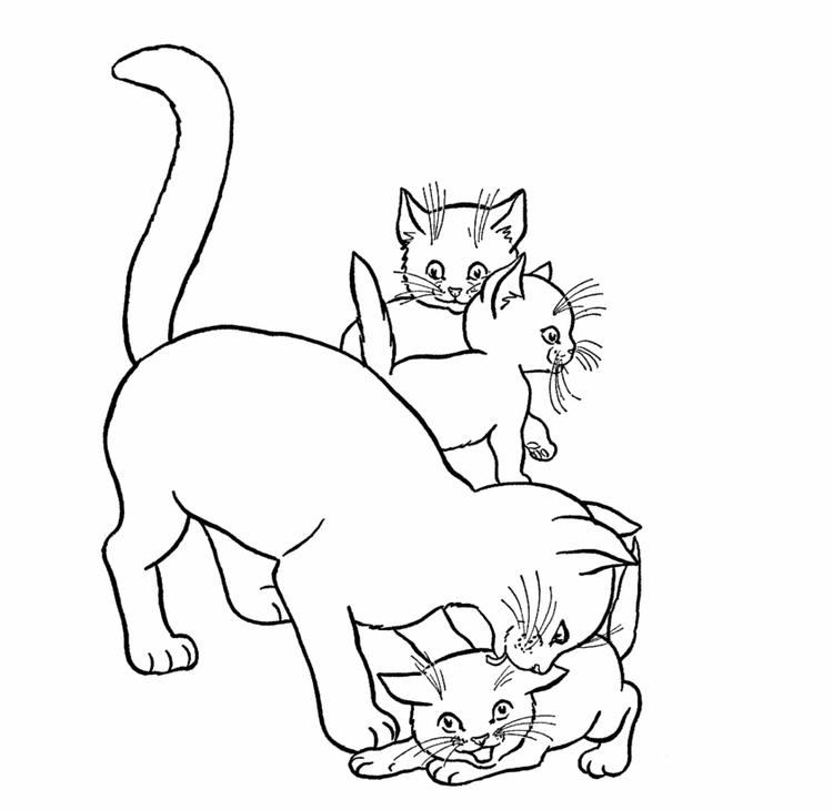 Kids Baby Kitty Coloring Pages