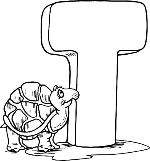 Kids Leard Alphabet Letter T Is For Turtle Coloring Page