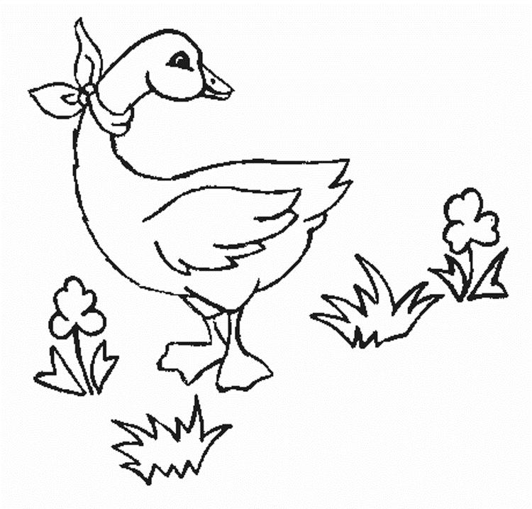 Kids Printable Animal Coloring Pages Goose