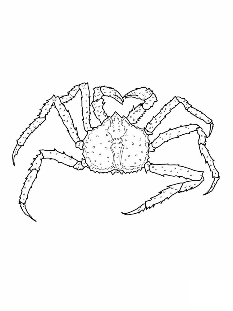 King Crab Coloring Pages Printable