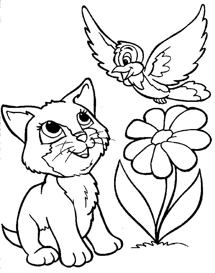Kitten And Bird Free Kids Coloring Pages For Girls