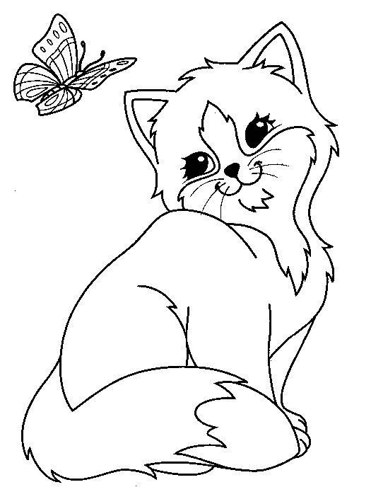 Kitten Coloring Pages And Butterfly