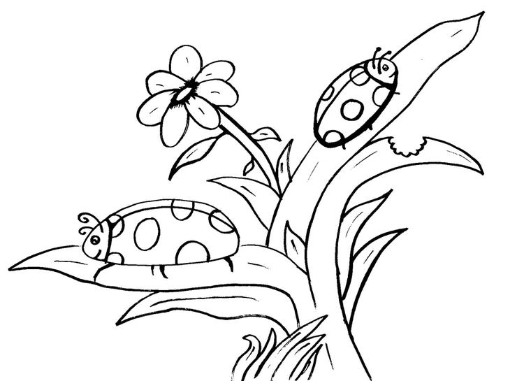 Ladybug Coloring Pages On Leaves With Flower