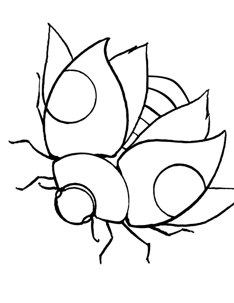 Ladybug Coloring Pages Wings Open