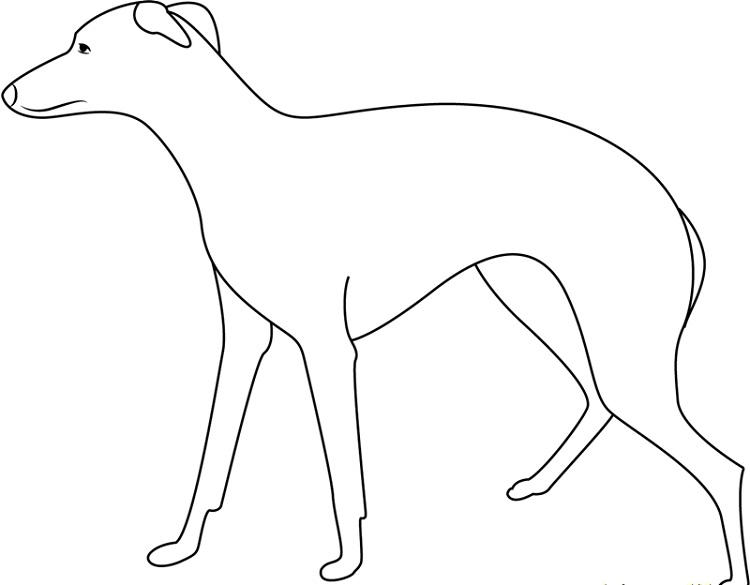 Large Dog Coloring Pages