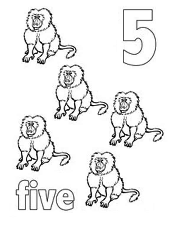 Learn Number 5 With Five Baboons Coloring Page
