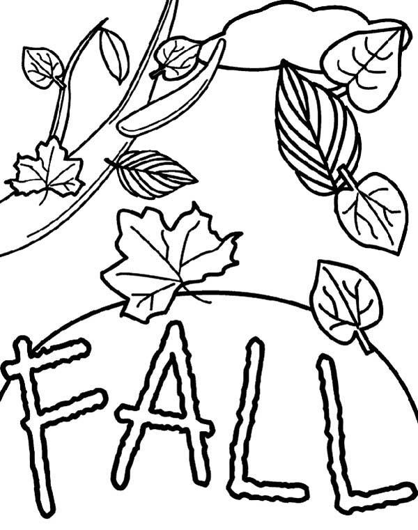 Leaves Falling From Tree Coloring Pages