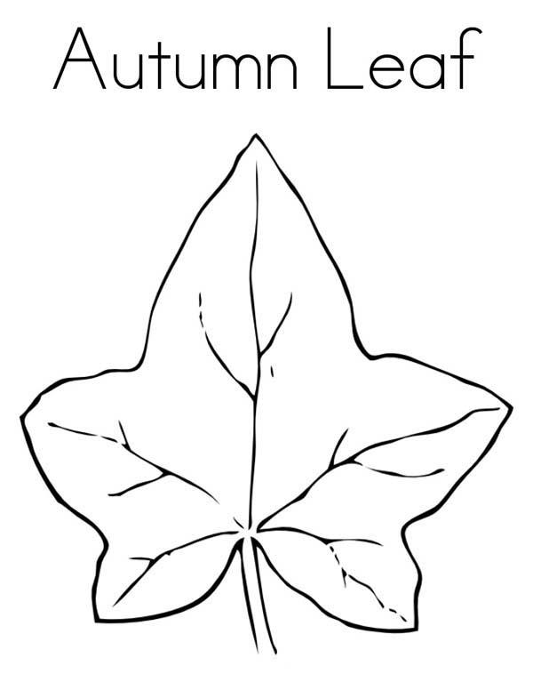 Leaves From Autum Season Coloring Pages