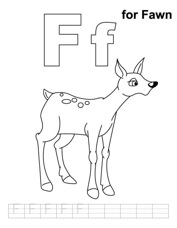 Letter F Is For Fawn Coloring Page