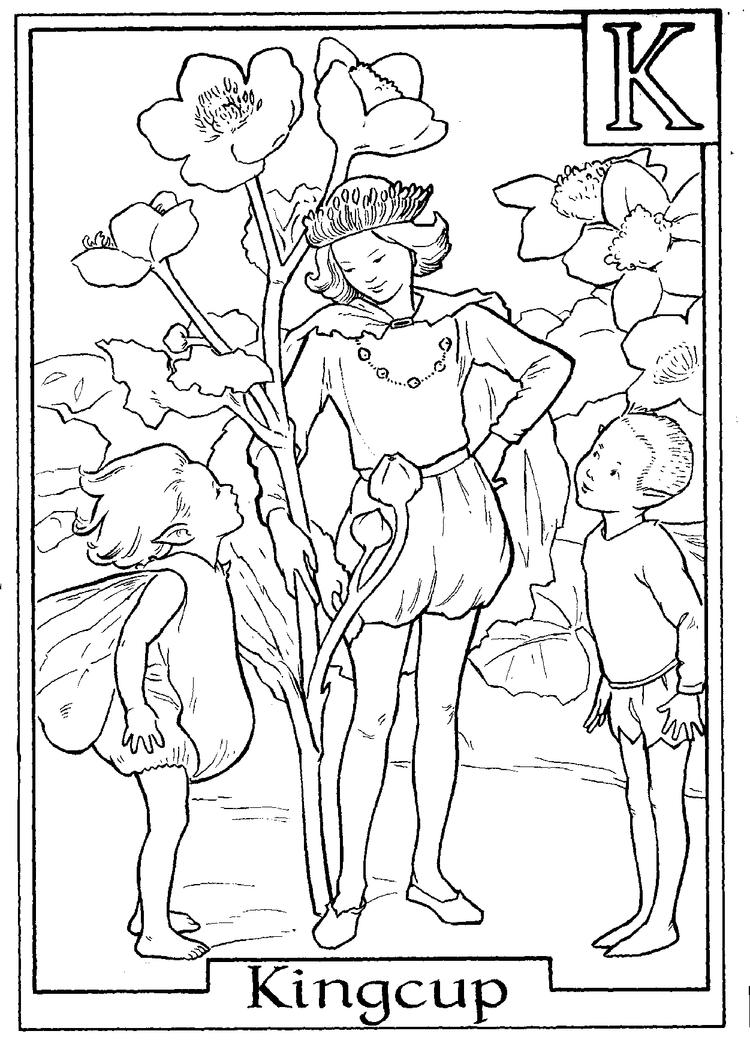 Letter K For Kingcup Flower Fairy Coloring Page