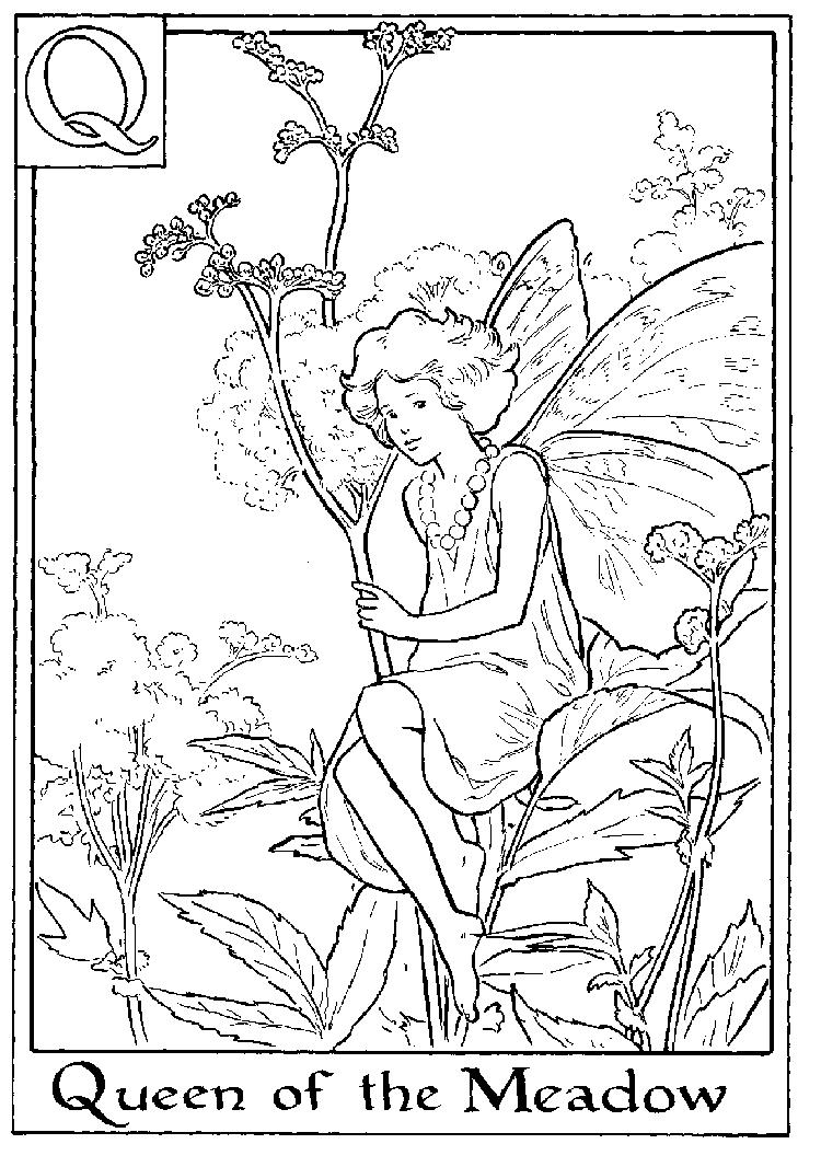 Letter Q For Queen Of The Meadow Flower Fairy Coloring Page