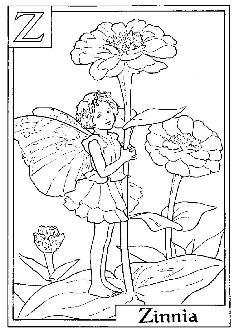Letter Z For Zinnia Flower Fairy Coloring Page