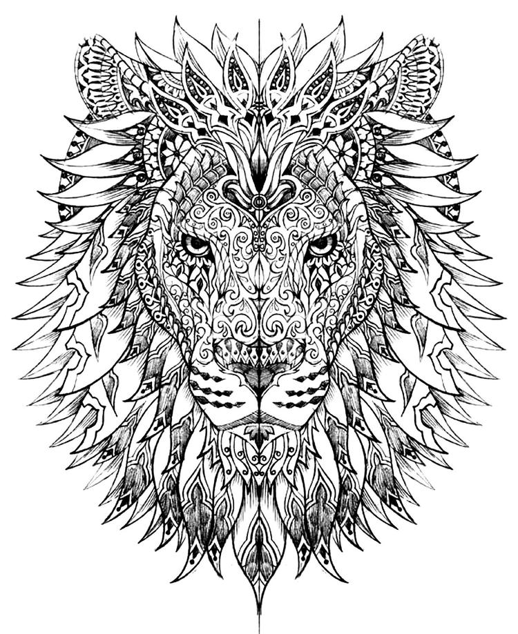 Lion Head Adult Coloring Pages