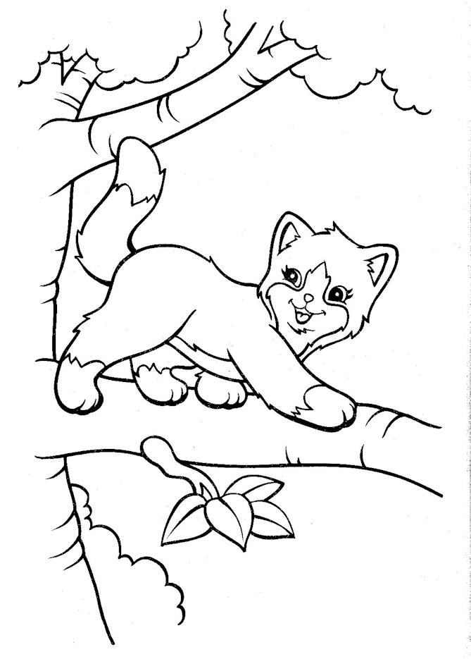 Lisa Frank Coloring Pages Cat On Tree