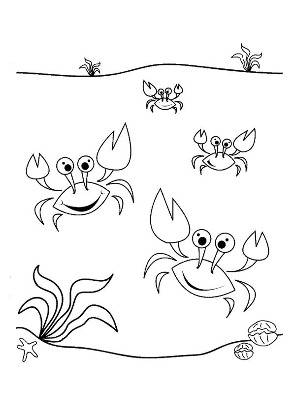 Little Crab Coloring Pages For Kids