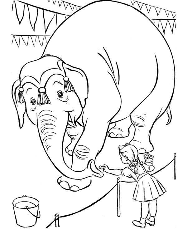 Little Girl Give Nut To An Elephant At Circus And Carnival Coloring Pages