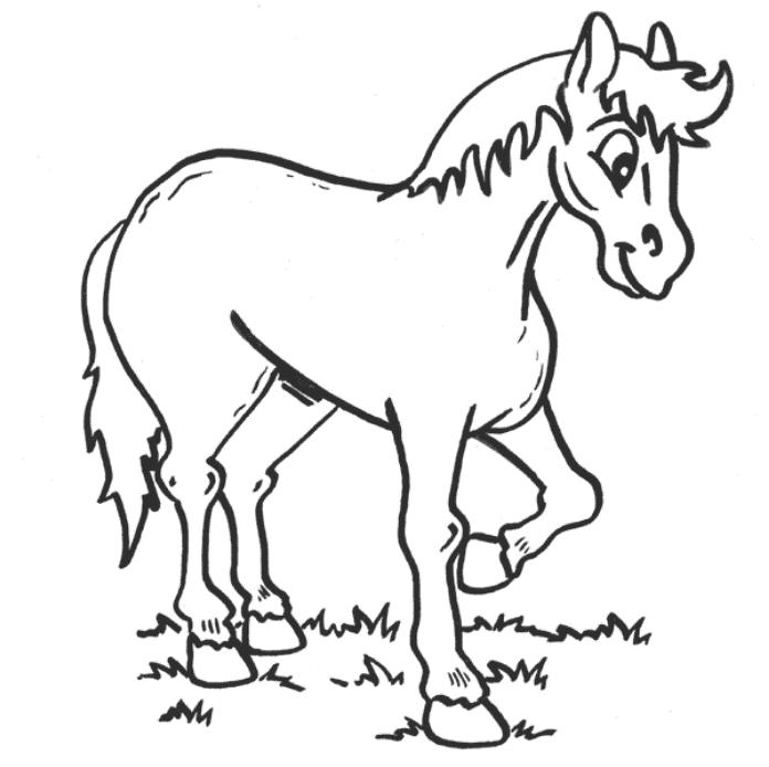 Little Horse Animal Coloring Page For Preschool