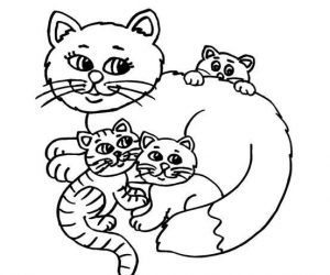 Lovely baby kitty coloring pages