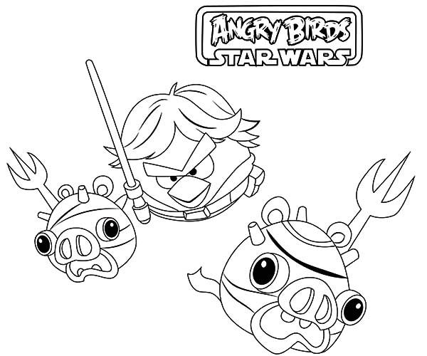 Luke Skywalker Won Against Imperial Pigs In Angry Bird Star Wars Coloring Pages
