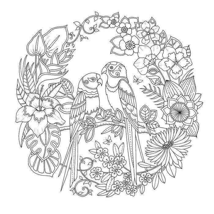 Magical Jungle Coloring Pages