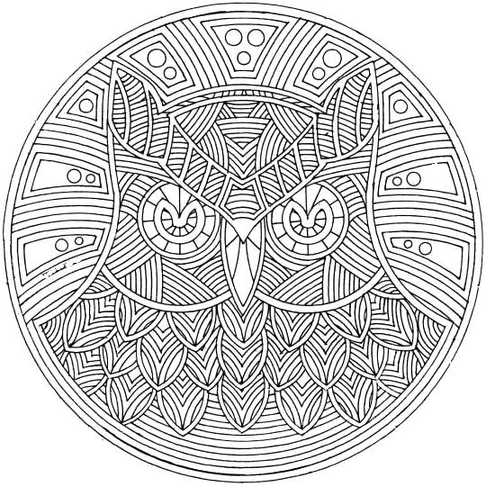 Mandala Adult Coloring Pages Printable Owl