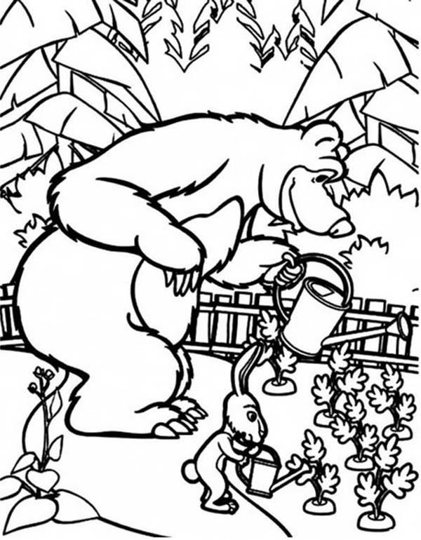 Mascha And Rabbit Watering Carrot In Mascha And Bear Coloring Pages