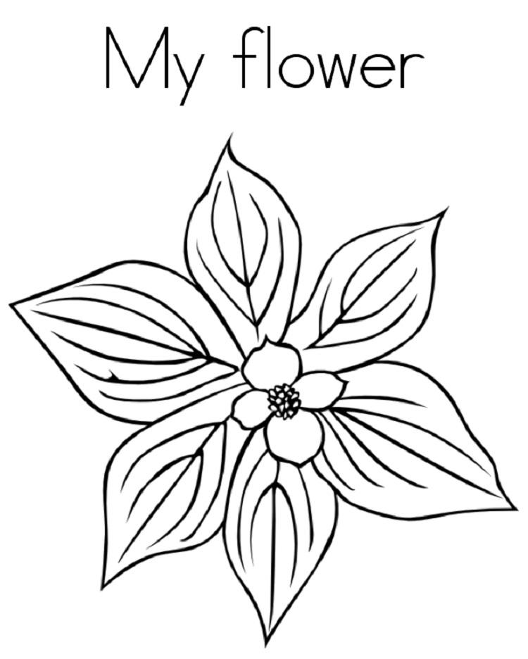 May Flower Coloring Pages