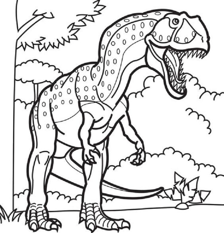 Meat Eating Dinosaur Coloring Pages