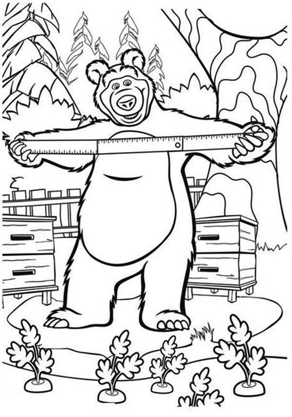 Mischa Measuring Beehive In Mascha And Bear Coloring Pages