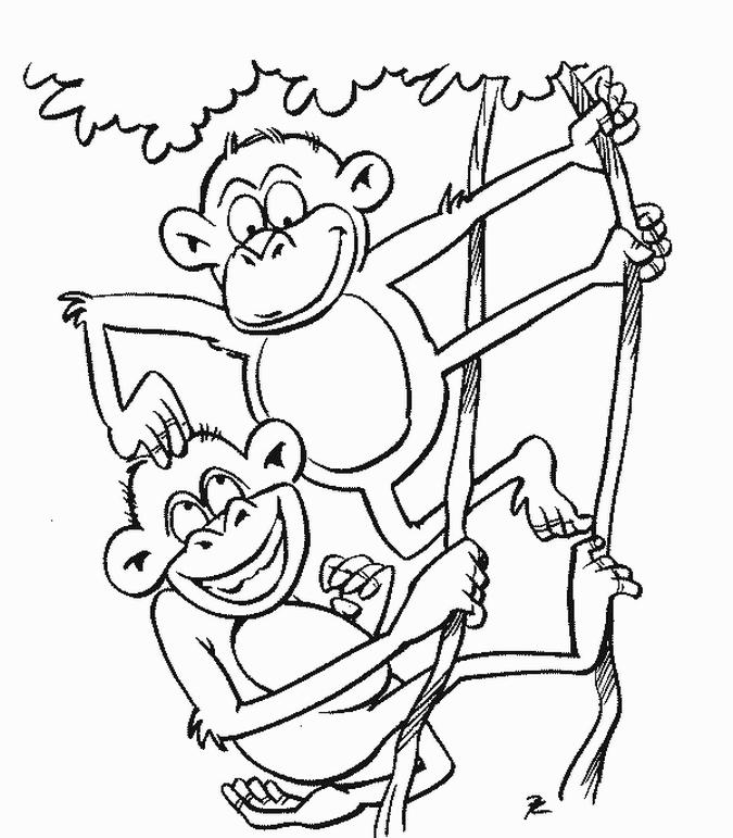 Monkey Coloring Pages Two Monkeys