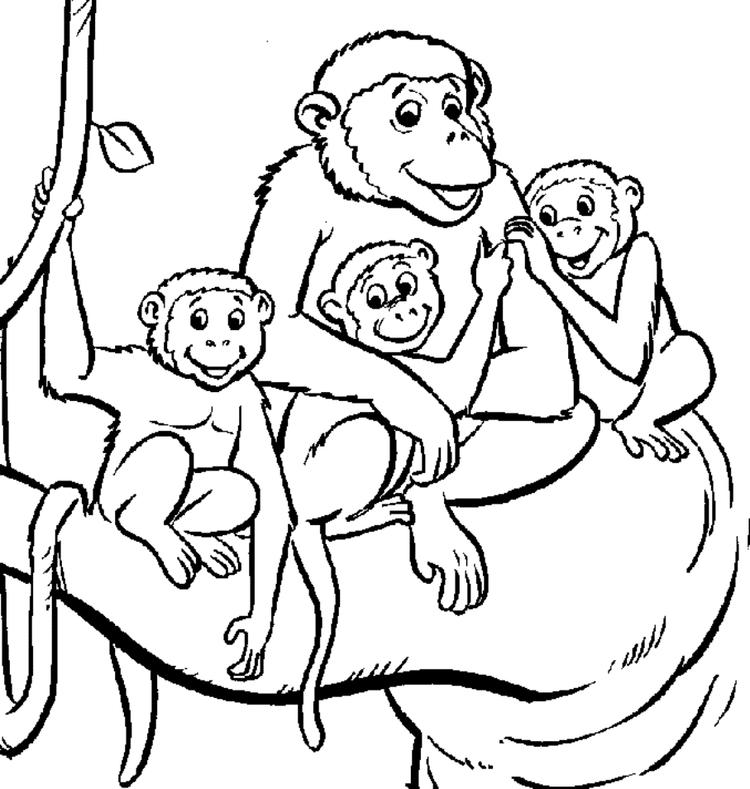 Monkey Family Coloring Pages