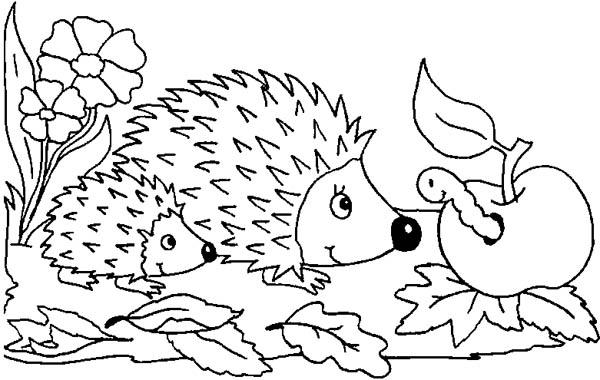Mother Hedgehog And Her Baby Meet Caterpillar Colouring Pages