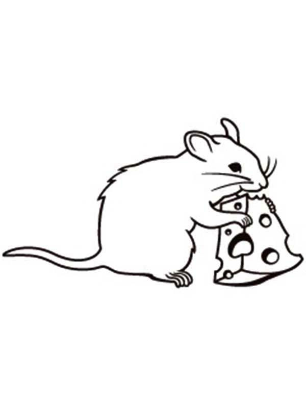 Mouse And Rat Eating Cheese Coloring Pages