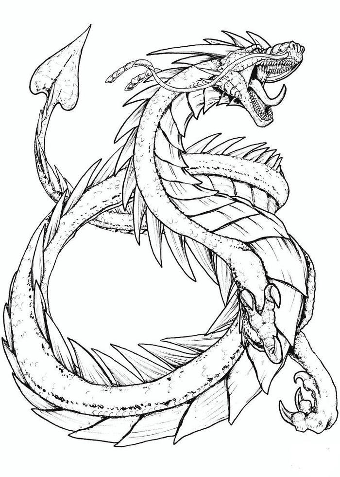 Mythical Dragons Coloring Pages
