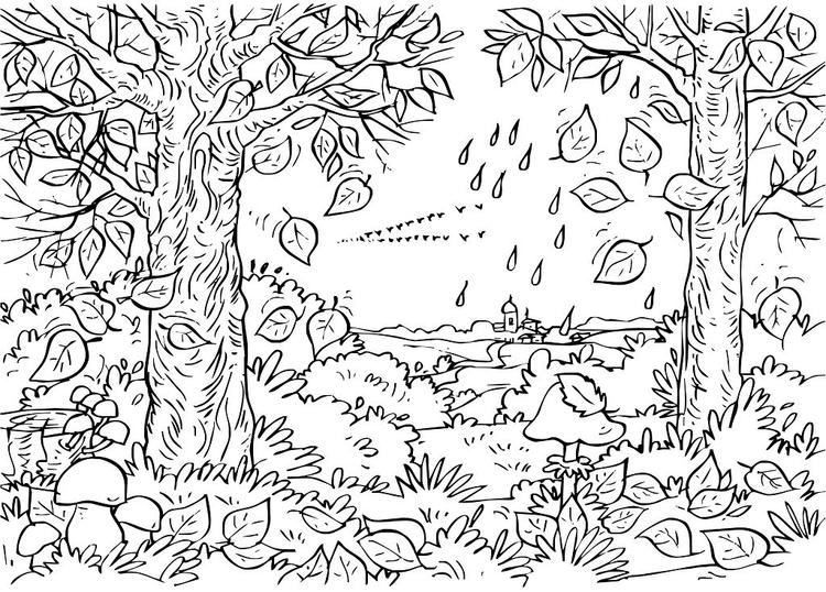 Nature Coloring Pages Autumn Forest