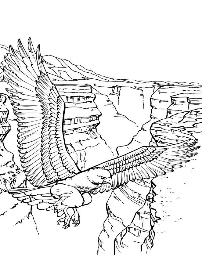 Nature Coloring Pages Eagle Over Grand Canyon