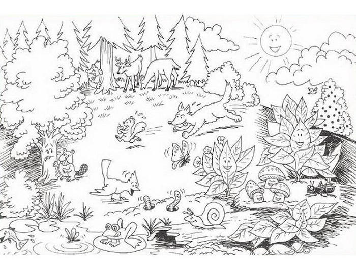 Nature Coloring Pages Free Printable