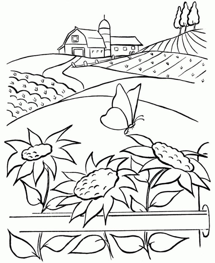 Nature Coloring Pages With Sunflowers