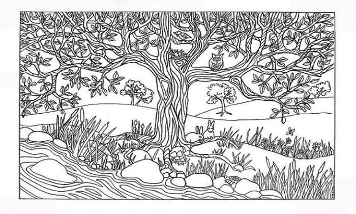 Nature Scene Coloring Pages