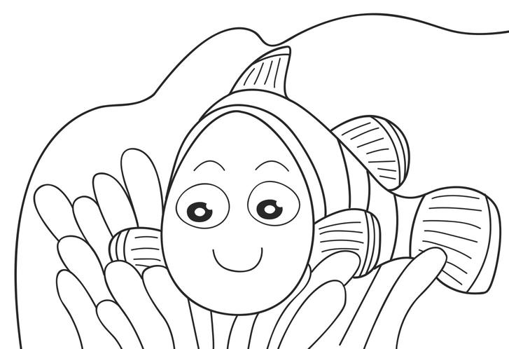 Nemo Preschool Coloring Pages Fish
