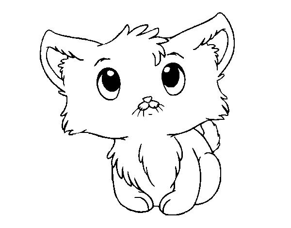 Nice And Cute Cat Coloring Pages