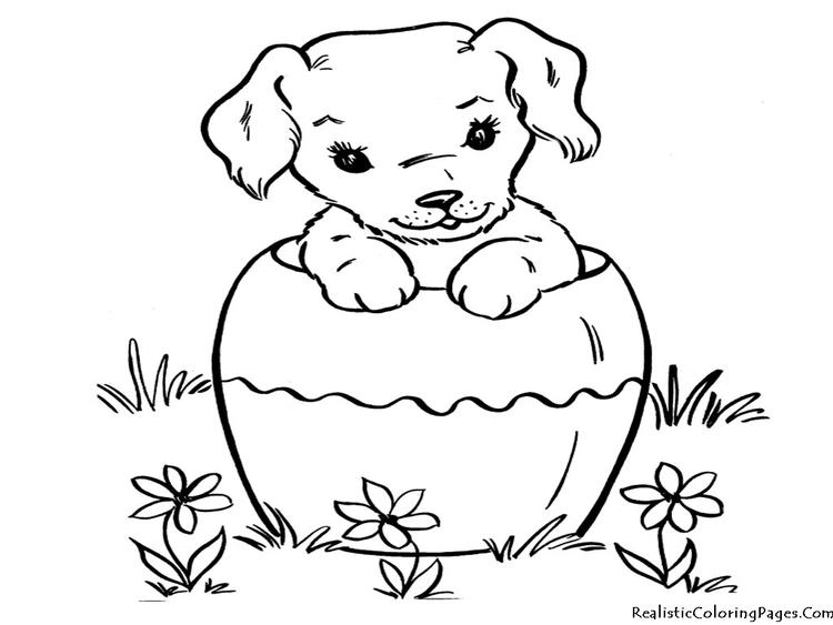 Nice Dog Coloring Pages
