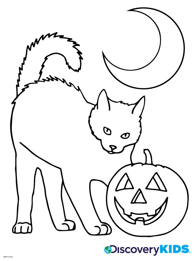 Nice Halloween Cat Coloring Pages