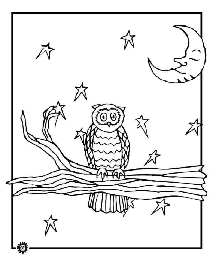 Night Owl Coloring Pages